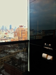 My view from the bathroom at the Standard