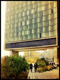 The High Line and the Standard Hotel